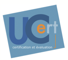 Online examinations to validate and recognize the Geoconcept users' GIS skills
