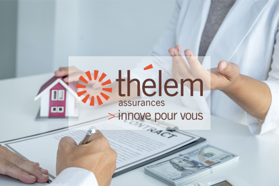 thelem-uses-sales-and-marketing-and-geoconcept-web